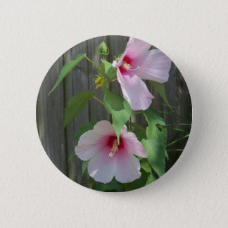 Pink on pink duo of hibiscus flowers 2 inch round button