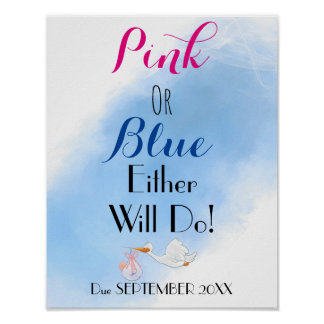 Pink or Blue Either will Do Baby-shower Poster