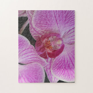 Pink Orchid Jigsaw Puzzle