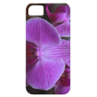 Pink Orchid Phone Cover iPhone 5 Cover