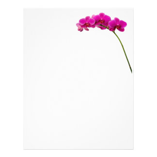 Pink Orchid Stationary Letterhead