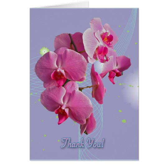 Pink Orchids Thank You Card