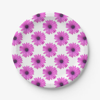 Pink Osteospermum and Transparent Background 7 Inch Paper Plate