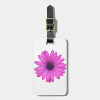 Pink Osteospermum and Transparent Background Luggage Tag
