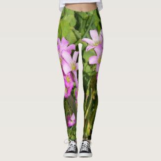 pink Oxalis wildflowers leggings