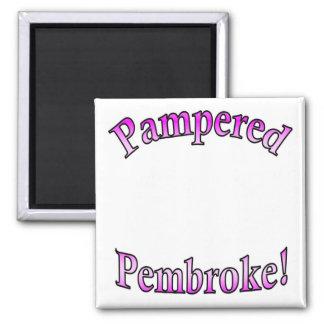 Pink Pampered Pembroke Template Magnet