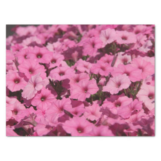 pink pansy tissue paper