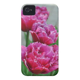 Pink parrot tulips Case-Mate iPhone 4 case