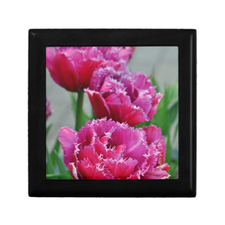 Pink parrot tulips gift box