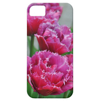 Pink parrot tulips iPhone 5 cover