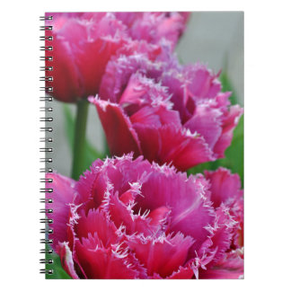 Pink parrot tulips notebooks