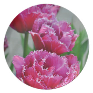 Pink parrot tulips plate