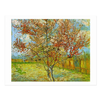 Pink Peach Tree in Blossom Reminiscence of Mauve Postcard