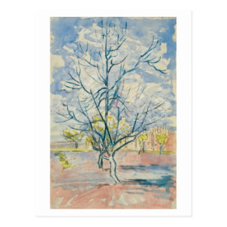 Pink Peach Trees Van Gogh Fine Art Postcard
