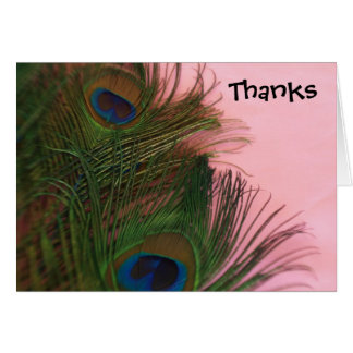 Pink Peacock Feathers Wedding Thank You Card