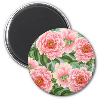 Pink Peonies On Grey Magnet