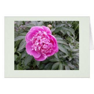 Pink Peony Easter 5x7 jjhelene Greeting Card