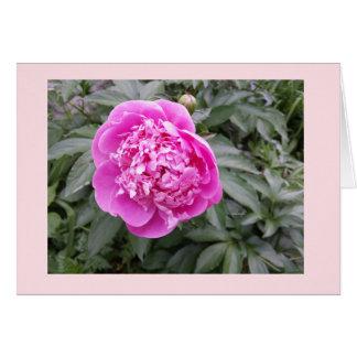 Pink Peony Easter jjhelene 5x7 Greeting Card