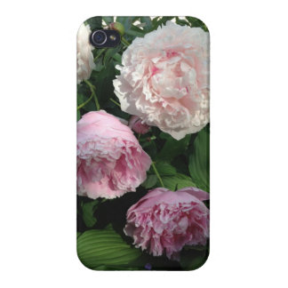 Pink Peony Flower Iphone4 Case iPhone 4 Cover