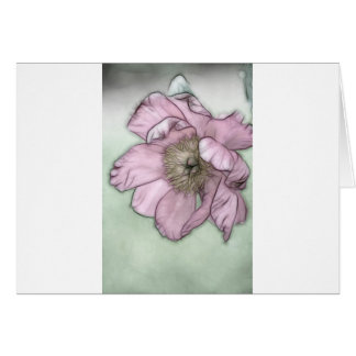 Pink Peony Flower Sketch Card