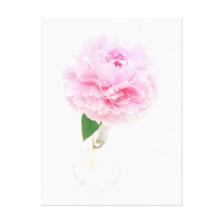 pink peony in a glass vase canvas print