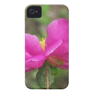Pink Peony iPhone 4 Cover
