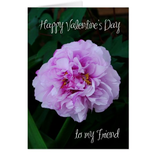 pink peony rose valentine to my friend card