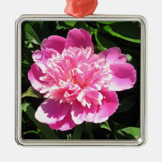 Pink Peony Silver-Colored Square Ornament