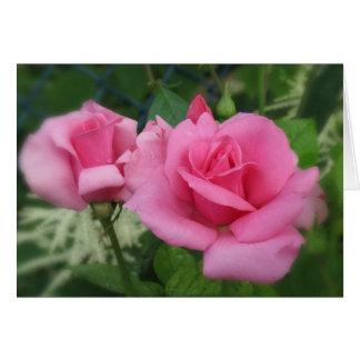 Pink Petals - Roses Card