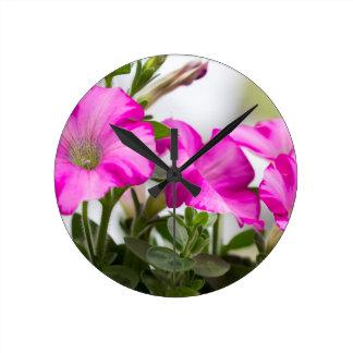 Pink Petunia Passion Round Clock