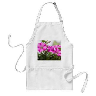 Pink Petunia Passion Standard Apron