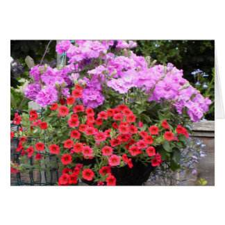 Pink Petunias and Red Million Bells Card