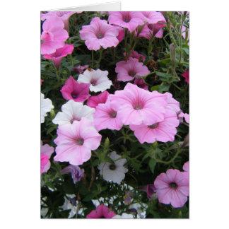 """""""Pink Petunias"""" Card"""