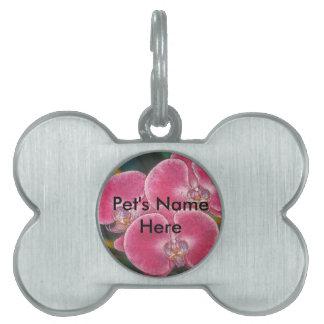 Pink Phalaenopsis Orchids Flowers Pet ID Tag