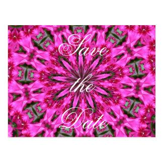 Pink Phlox Kaleidoscope Postcard