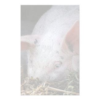 Pink pig photo stationery