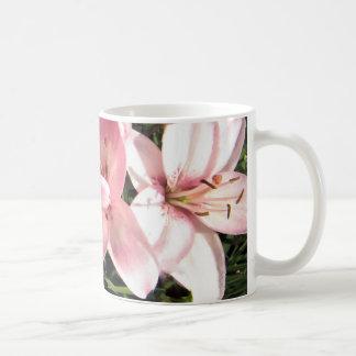Pink, Pink White Asiatic Lilies Coffee Mug