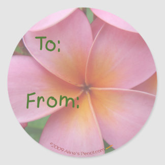 Pink Plumeria Gift Tag Stickers