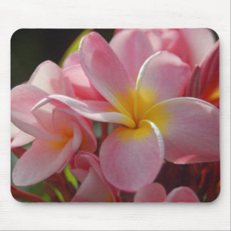 Pink Plumeria Mouse Pad