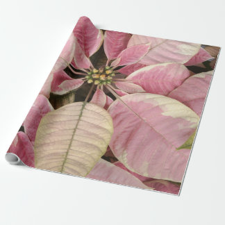 Pink Poinsettias Wrapping Paper