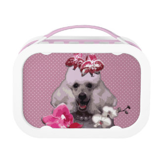 Pink poodle Yubo Lunchbox, Pink Lunch Box