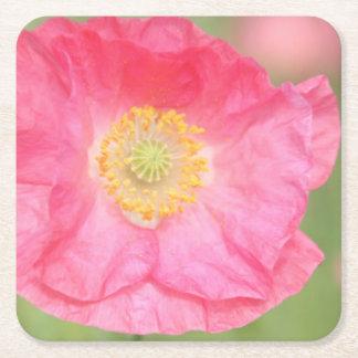 Pink Poppy Coaster