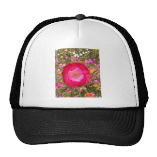 Pink Poppy Trucker Hat