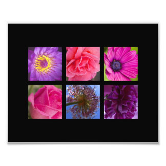 Pink & Purple Flowers Art Photo