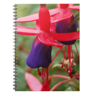 Pink Purple Flowers Photo Notebook