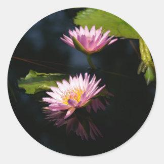 Pink Purple Lotus Waterlilies Classic Round Sticker