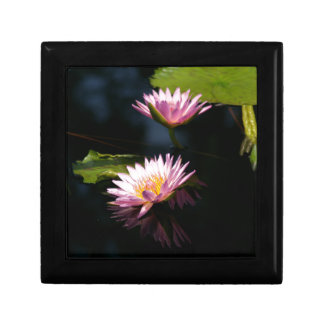 Pink Purple Lotus Waterlilies Gift Box
