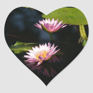 Pink Purple Lotus Waterlilies Heart Sticker