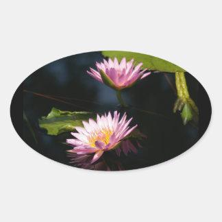 Pink Purple Lotus Waterlilies Oval Sticker