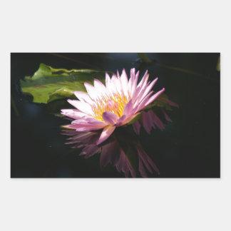 Pink Purple Lotus Waterlilies Sticker
